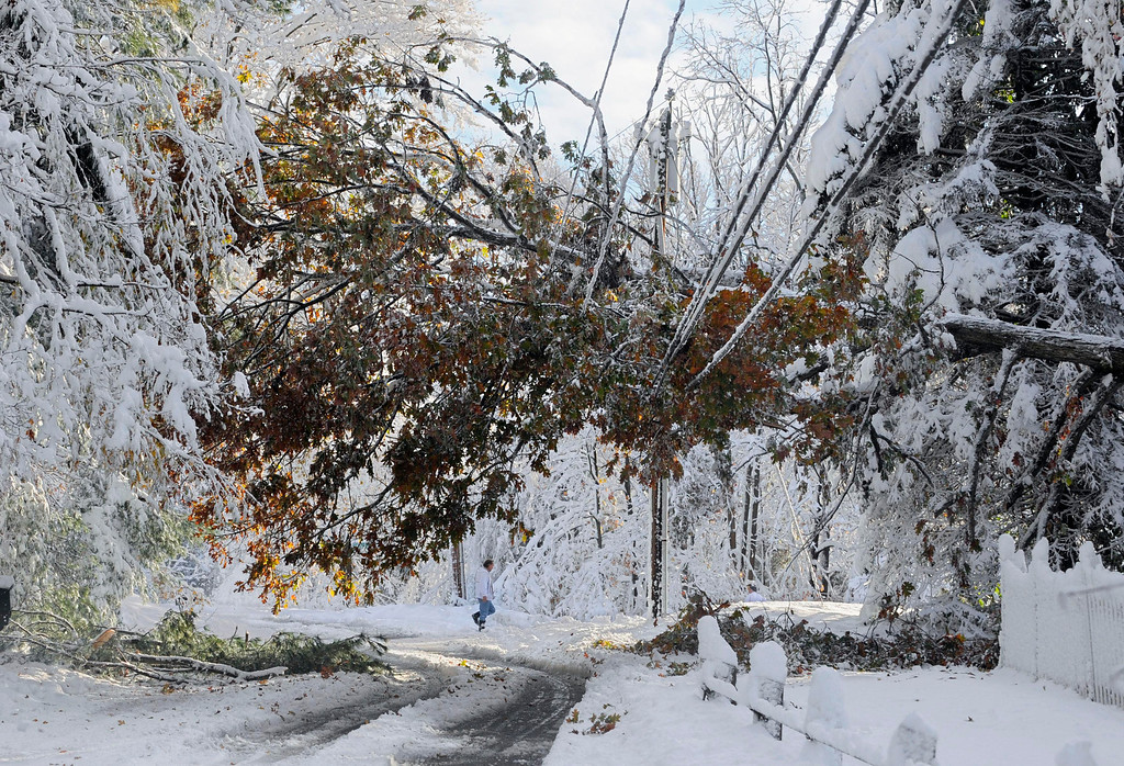 . In this Oct. 30, 2011 file photo, a man walks near a tree down on a power line a day after a snow storm in Glastonbury, Conn.  (AP Photo/Jessica Hill, File)