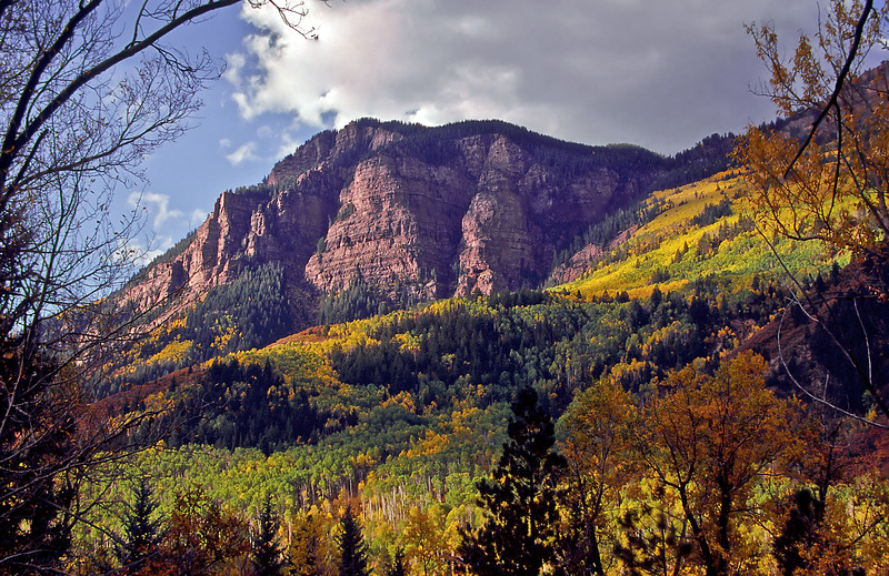Dappled evening light and fall colors create a vibrant spectacle on  McClure Pass between Carbondale and Paonia.