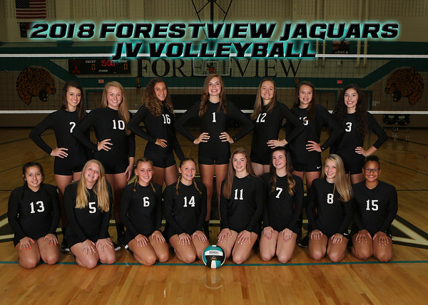 Forestview Team