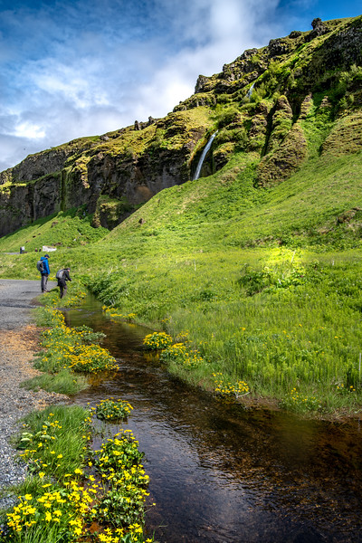 Along the Stream in Iceland  Photography by Wayne Heim