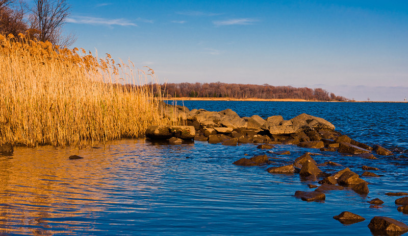 View of Water and Tall Grass, Chesapeake Bay, Fort Howard Park, Maryland