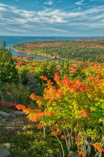 Acadia NP Fall 2019-33.jpg