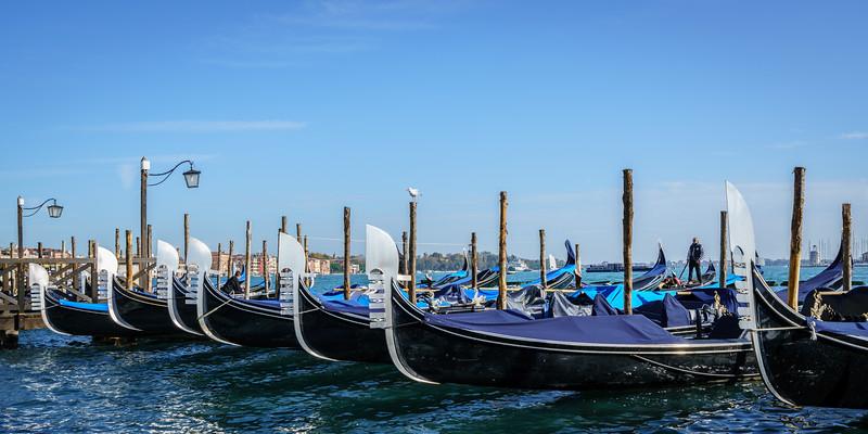 Venice-20161107-0528.jpg