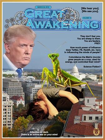 Newsweak + Great Awakening Covers