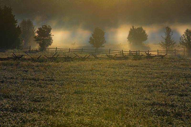 Gettysburg-2275-2.jpg