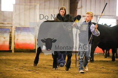 Open Steers