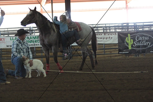 HillCountryJrRodeo2/Goats