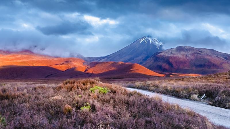 New Zealand_019.jpg