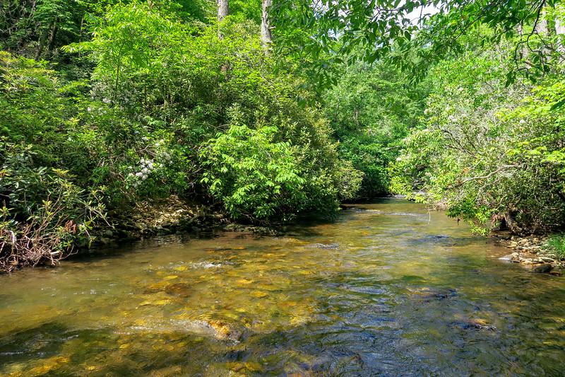 Bradley Creek (Crossing #2) -- 2,300'