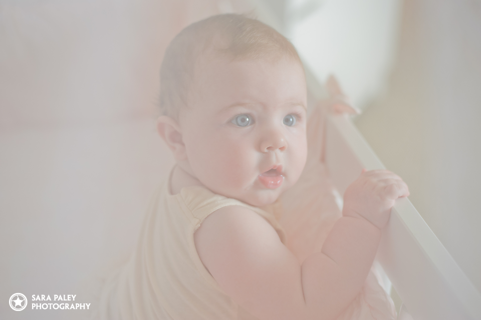 baby portrait photography, burnaby portrait photographer, sara paley photography, six month old baby, baby photos, half birthday, cake smash, lifestyle photography