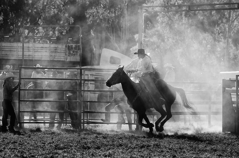 rodeo-rider-b--w__14522117597_o.jpg