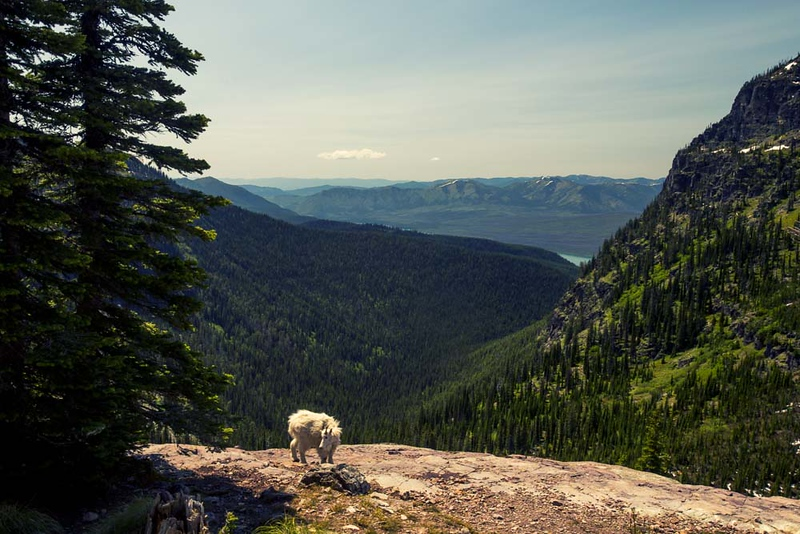 Suzi Pratt_Seattle Travel Photographer-19.jpg