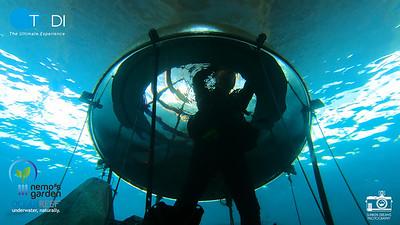 Ocean Reef and Nemo Garden Experience Aug 2020