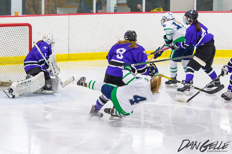 LDC Girls Hockey vs New Ulm