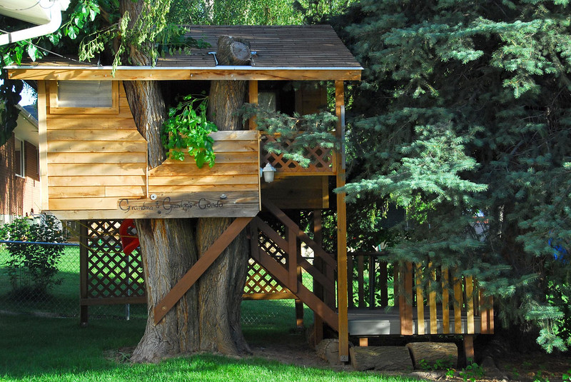 "6/22/07 – Last summer my dad built this tree house in their back yard. It is big enough that even adults can be comfortable in it. On the outside it says, ""Grandmas & Grandpas Condo."""