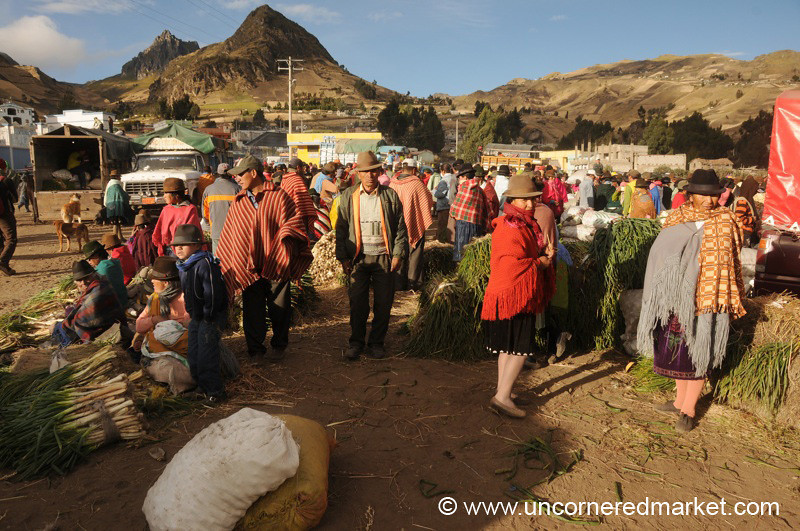 Gathering and Selling Green Onions - Zumbahua, Ecuador