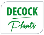 decock plants.jpg