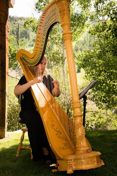 My Utah Harpist