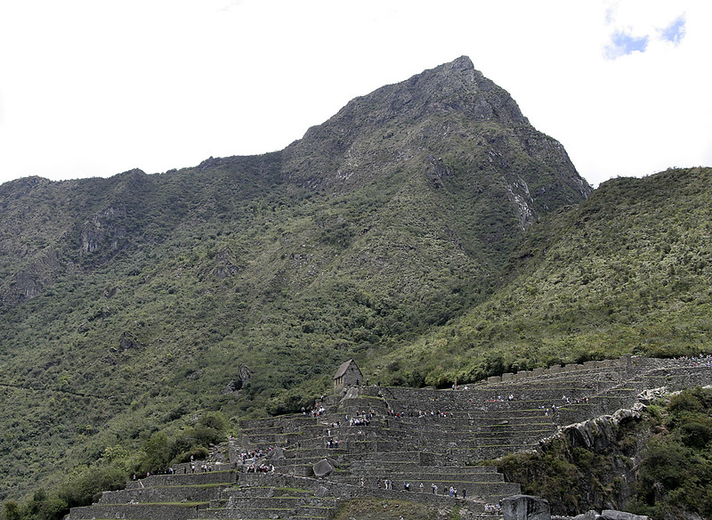 A view up to the Machu Picchu mountain that towers above the site.