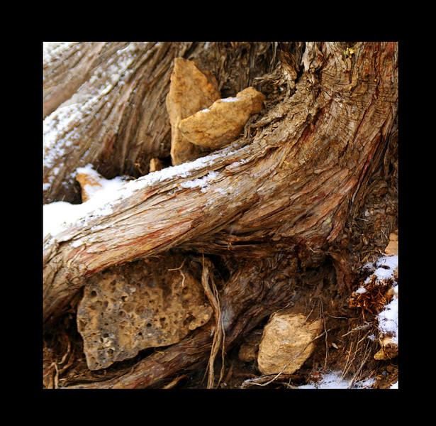 wood-and-rock-kate1_MG_2719.jpg