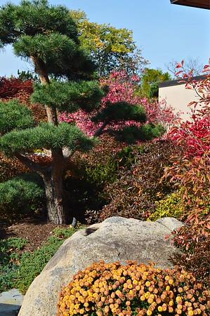Anderson Gardens October 21, 2015