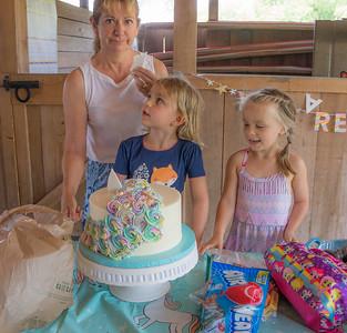 Lilah's Birthday 2017
