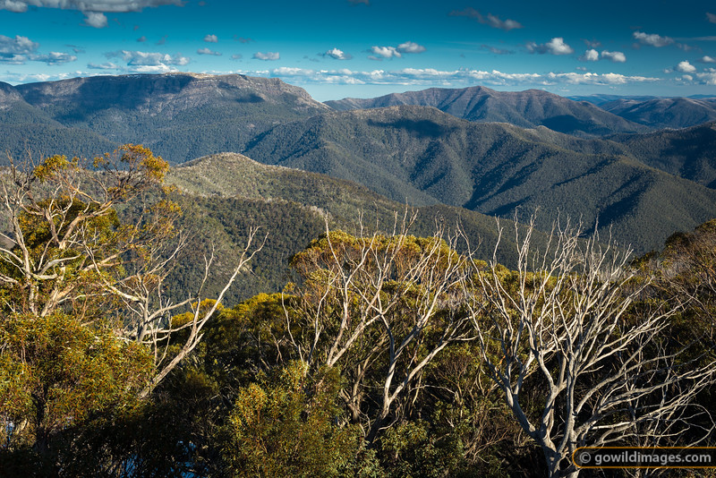 Light snow on The Bluff (L) with the picturesque three peaks of Mt MacDonald (R). As seen from Mt Buller