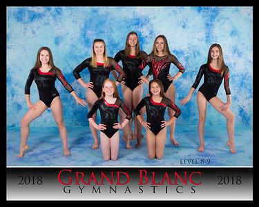Grand Blanc Gymnastics 2018