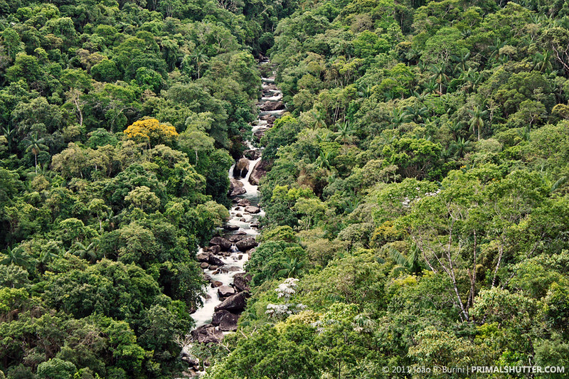 itatiaia-national-park.jpg