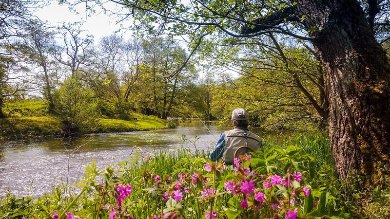 Bill on the Derwent in spring..