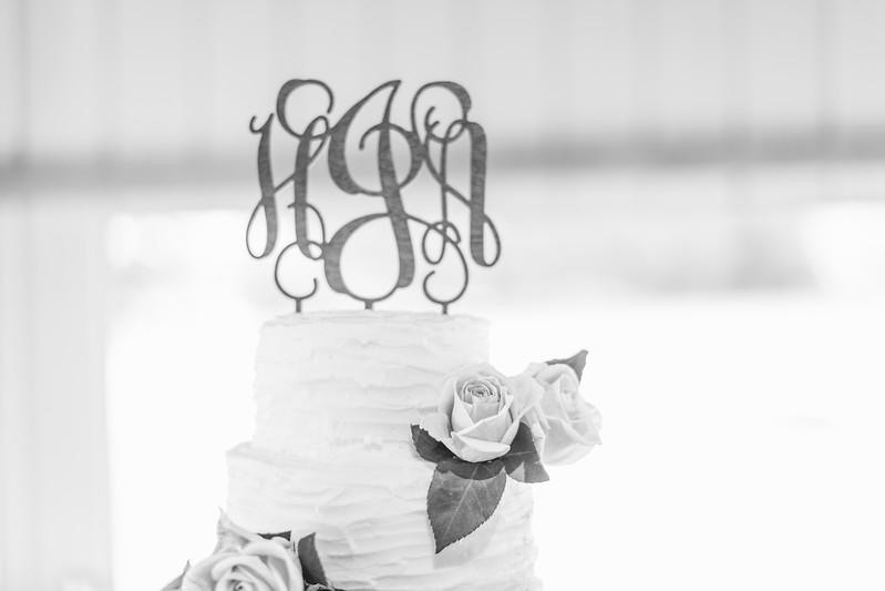 433_Aaron+Haden_WeddingBW.jpg