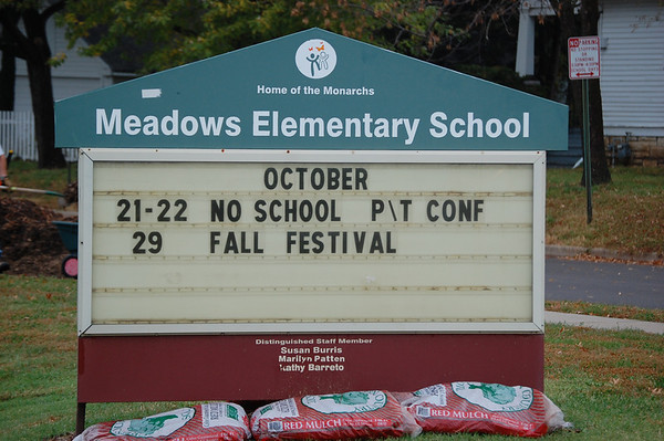 Sharefest 2010 - Meadows Elementary