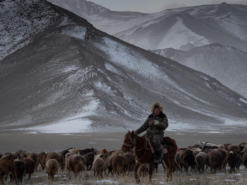 Mongolia - 2020 -15.jpg