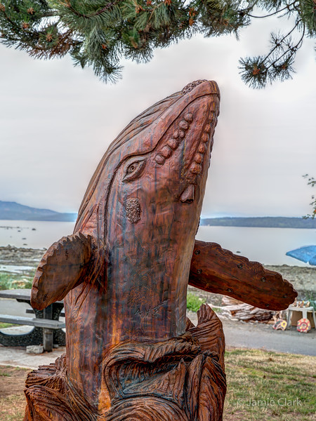 Breaching Whale. Chainsaw Sculpture Competition. Campbell River British Columbia