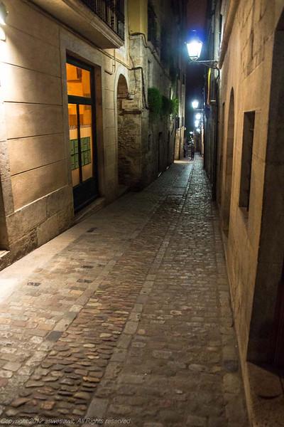AsWeSawIt_Girona-9937.jpg