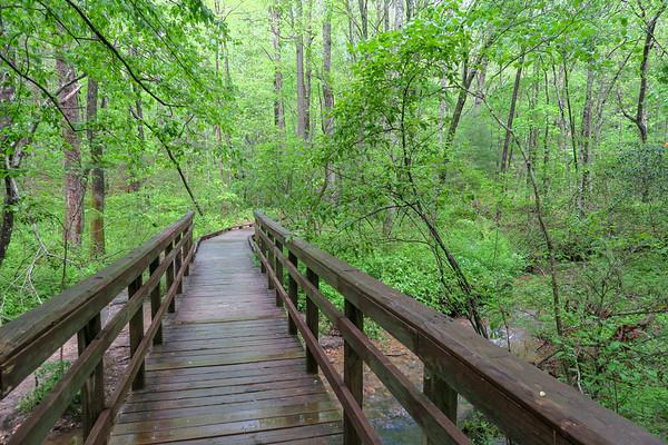 Deer Lake Lodge Trail (#664)