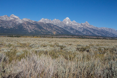Grand Tetons and Yellowstone Sep 2015