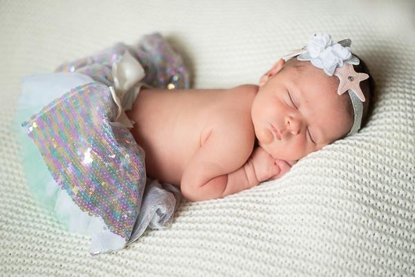 Cisternelli Newborn
