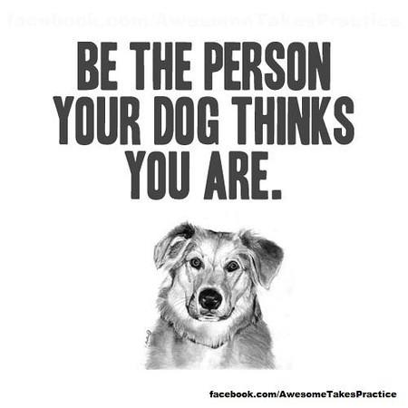 PETS_Dogs430724_480789945299800_2038048747_n-1.jpg