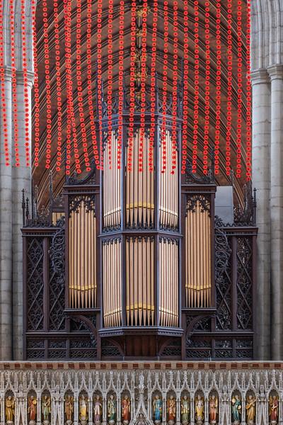 Cathedral & Ripon poppies-17.jpg