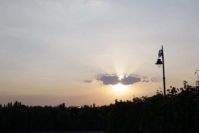 Image00636.jpg