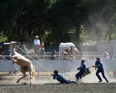 2007 San Benito County Saddle Horse Show