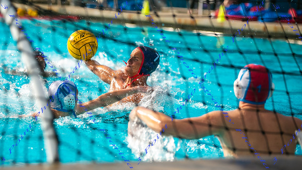 LBHS Water Polo 2019-2020