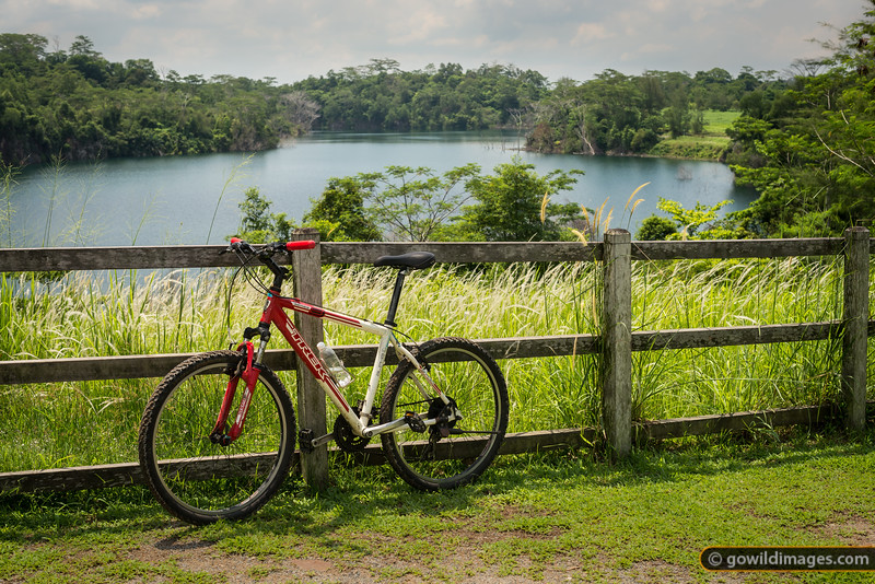 Hire Trek bike and  Ketam Quarry in the Ketam Mountain Bike Park