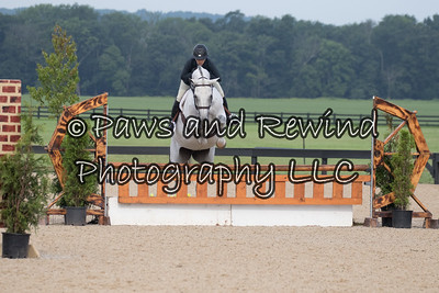 Adult Equitation (including M&S/ Ariat Medals)