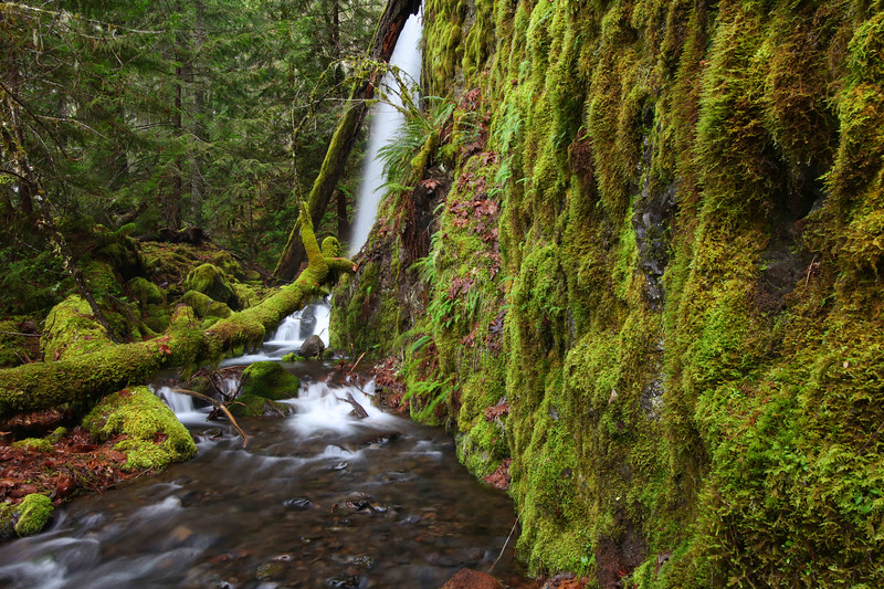 Lower South Cripple Creek Falls