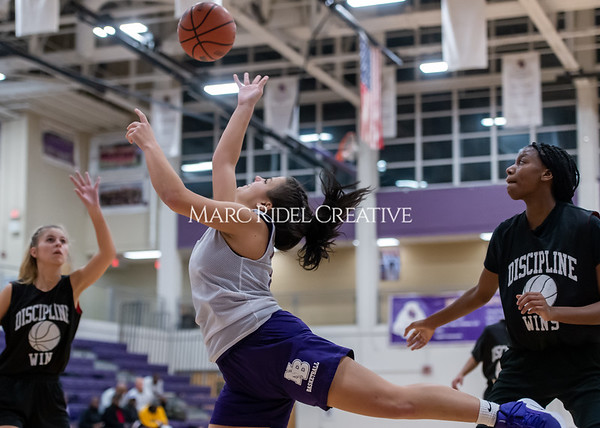 Broughton girls basketball vs Wake Forest. November 14, 2019. D4S_0143
