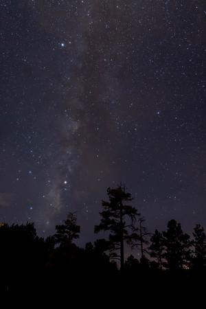 Show Low Milky Way