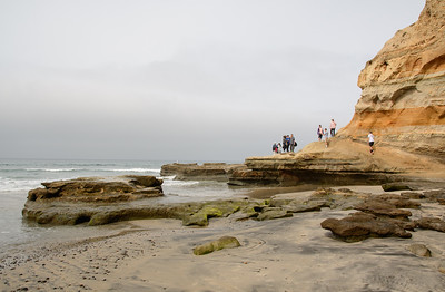 CA/Torrey Pines Natural Preserve - Terry's March, 2018