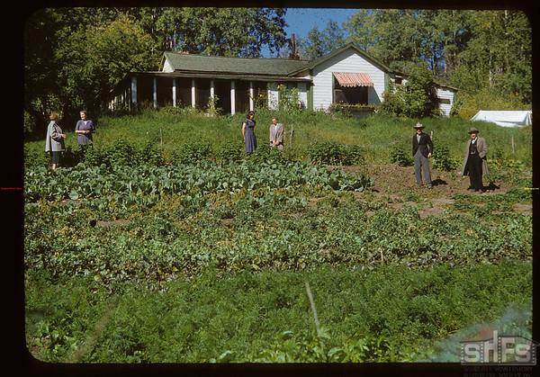 Tib. Moodie Garden & Home.  Klintonel.  09/15/1951